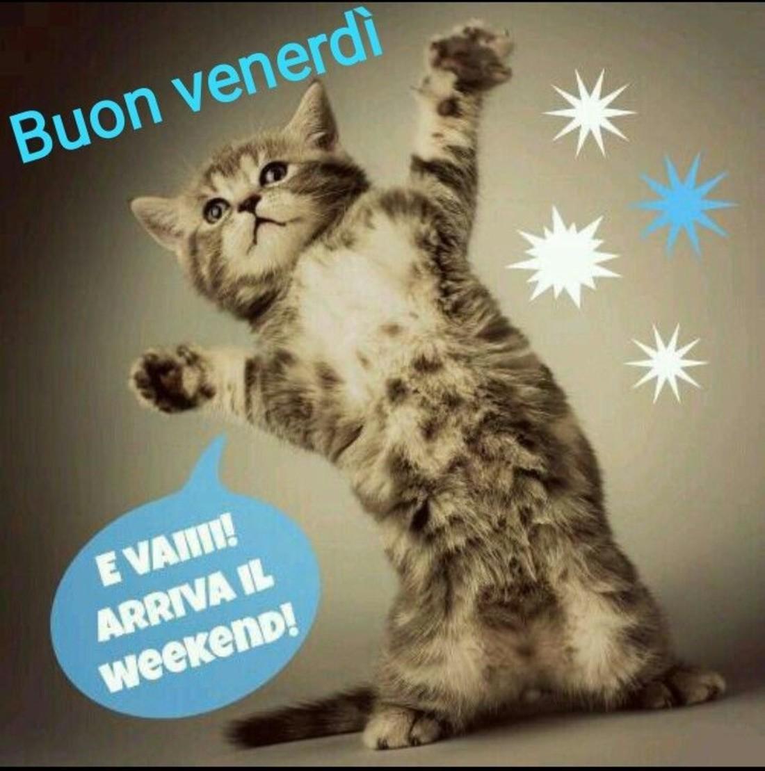 Buon Venerdì Evvaiiii arriva il Week-End !