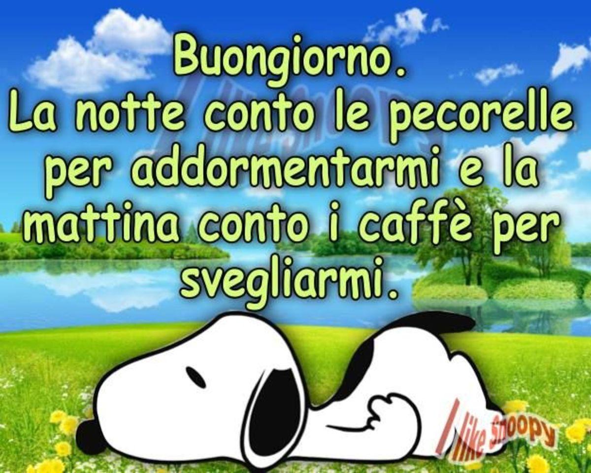 Buongiorno, la notte conto le pecorelle per addormentarmi, e la mattina conto i caffè per svegliarmi