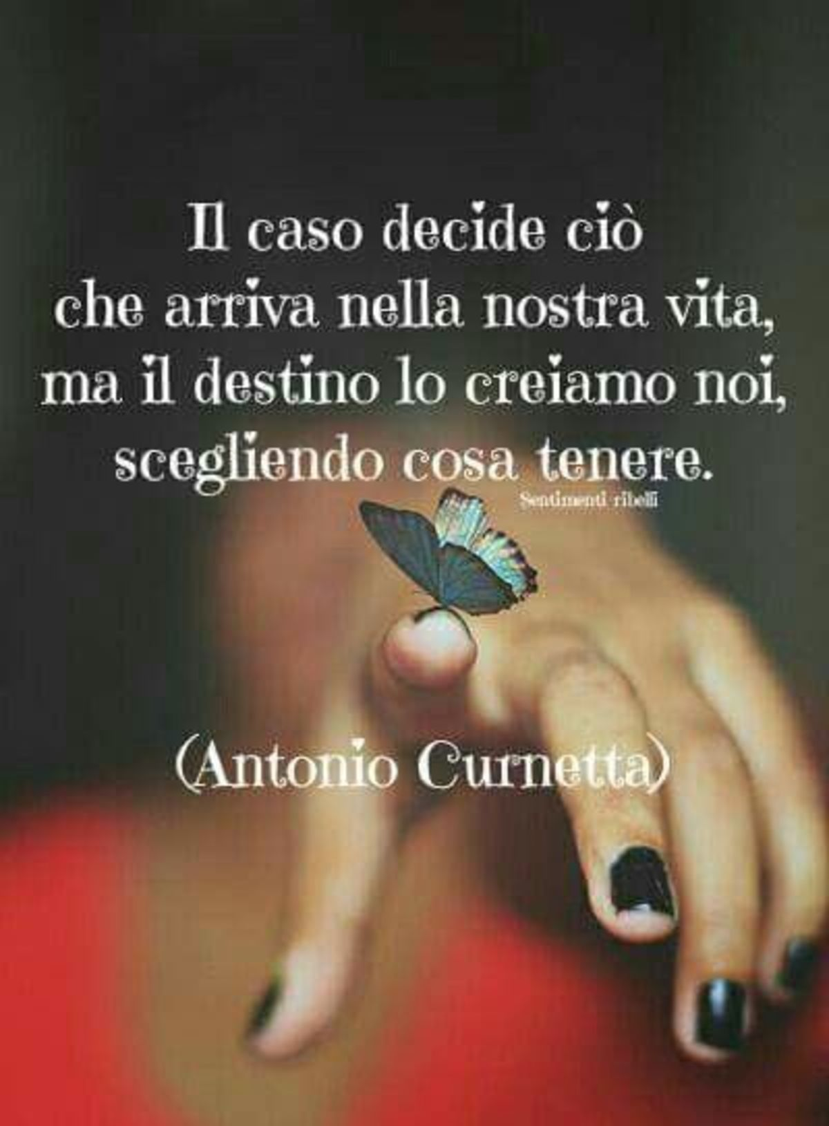 Il caso decide ciò che arriva nella nostra vita, ma il destino lo creiamo noi, scegliendo cosa tenere. Antonio Curnetta