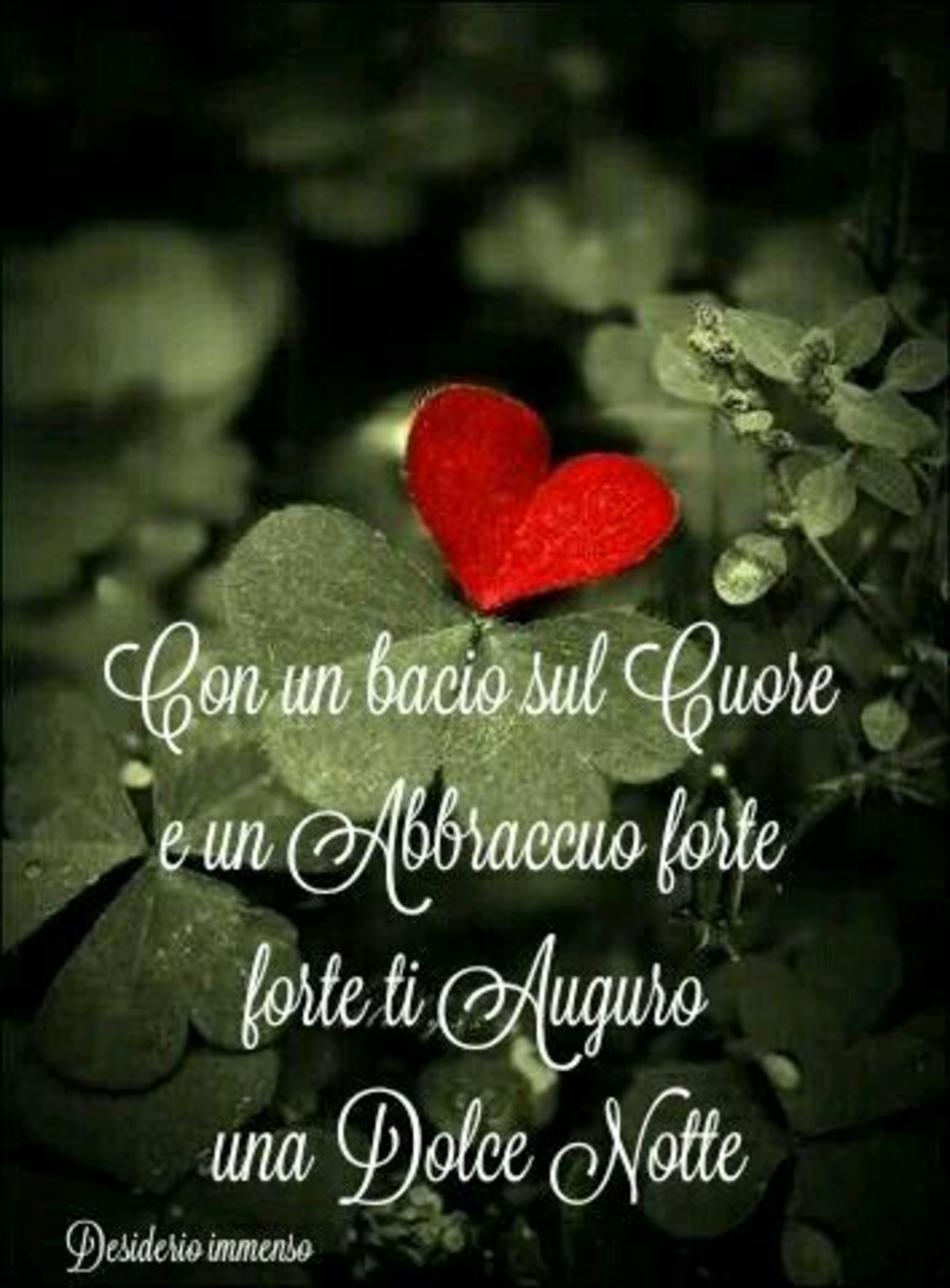 Con un bacio sul cuore ed un abbraccio forte forte ti auguro una Dolce Notte