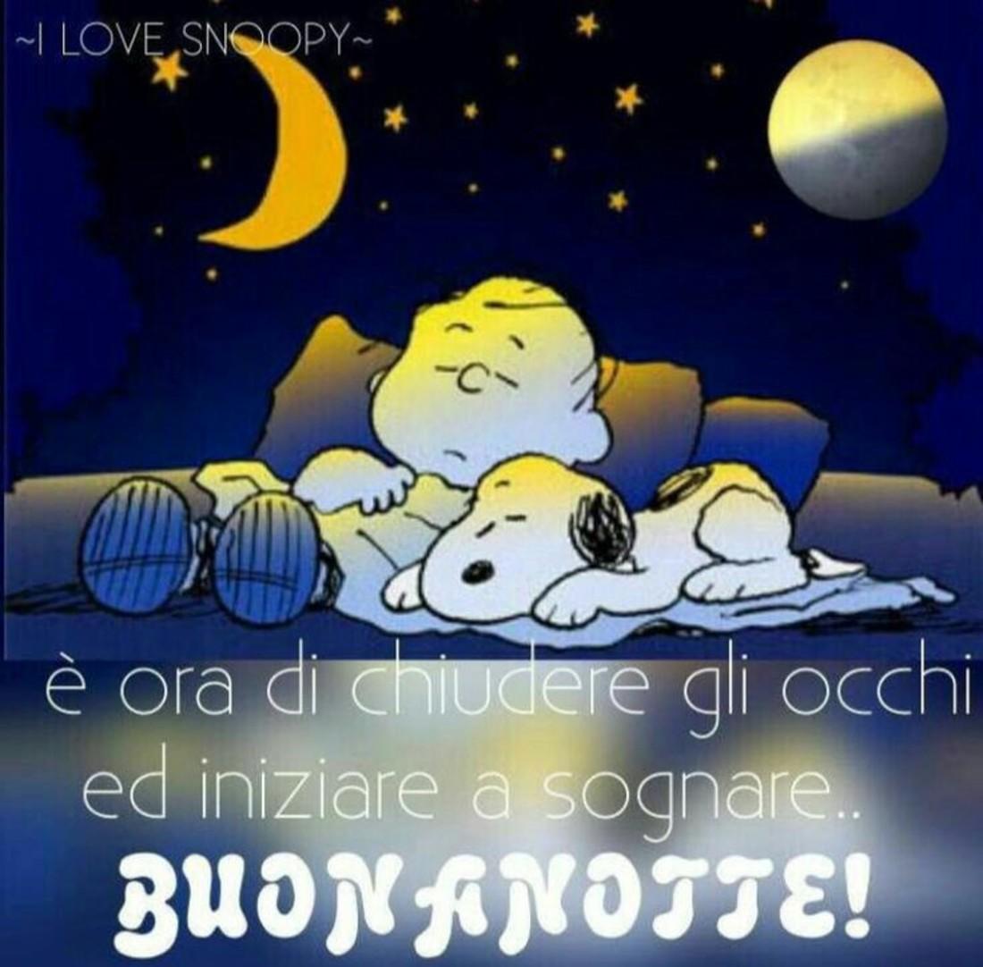 E' ora di chiudere gli occhi ed iniziare a sognare... Buonanotte (Snoopy)