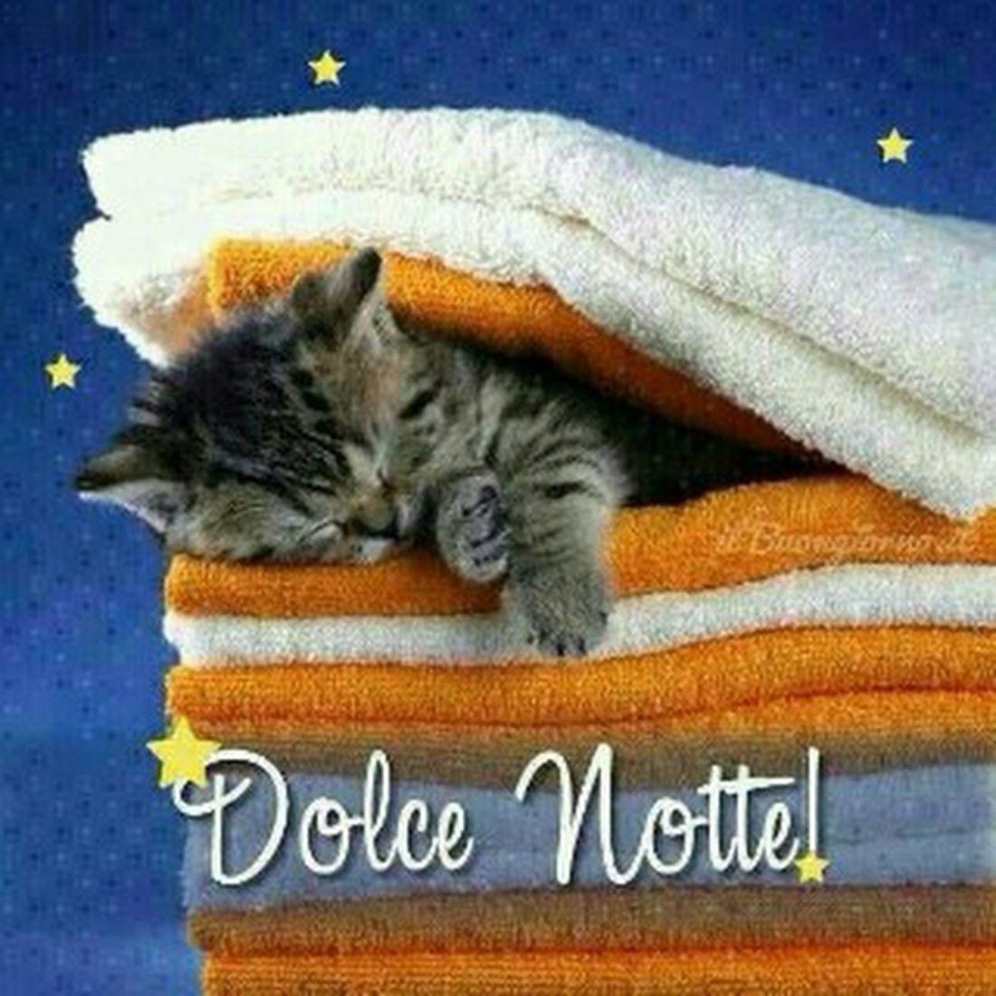 Dolce Notte!
