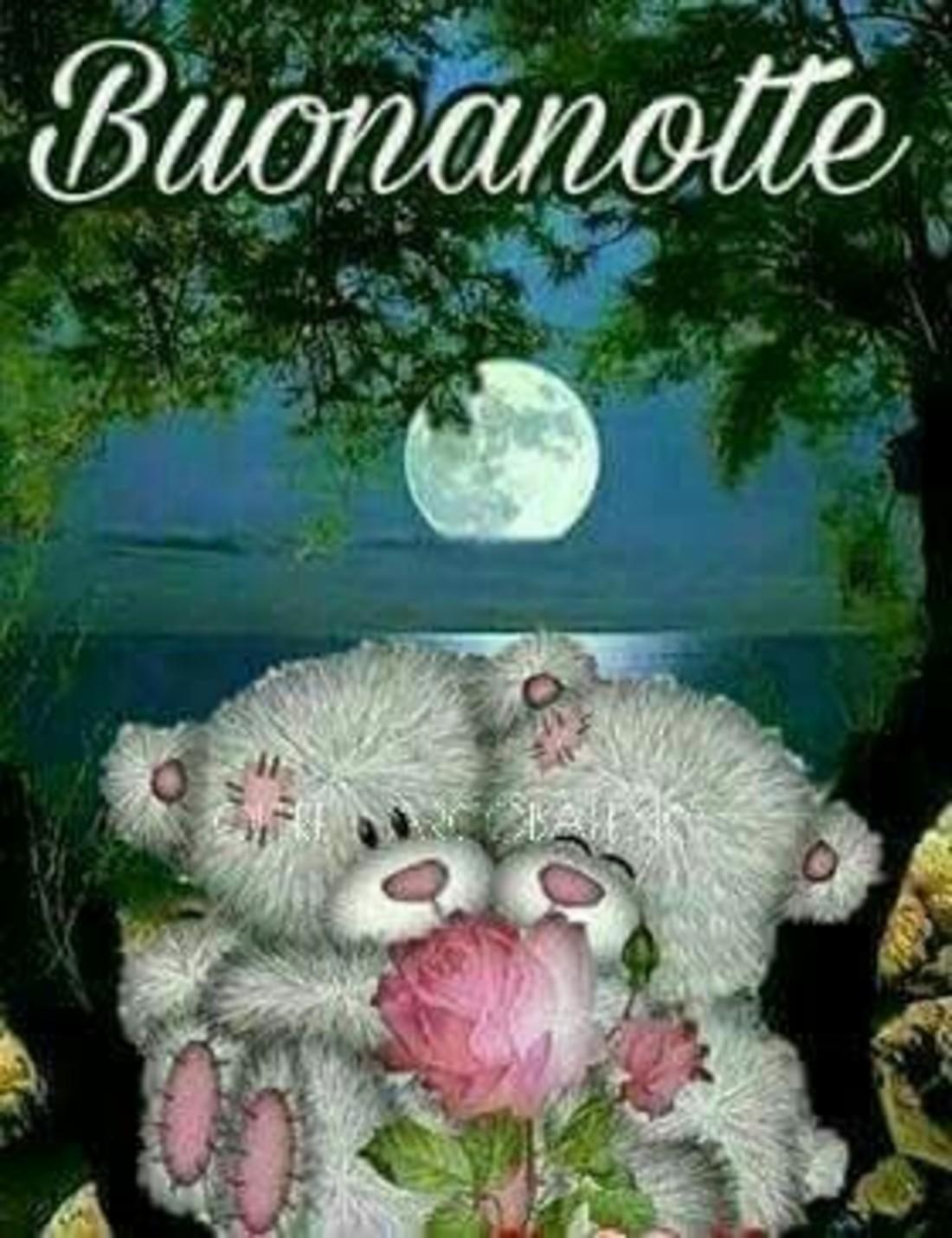 Buonanotte con gli orsetti