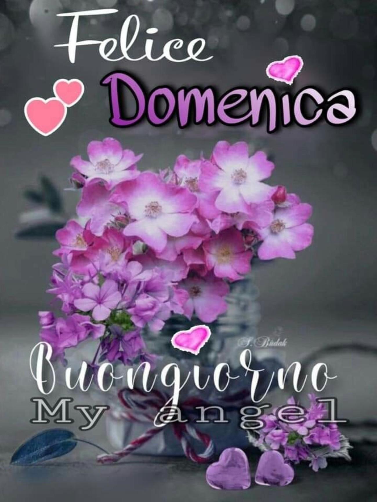 Felice Domenica, Buongiorno (my angel)