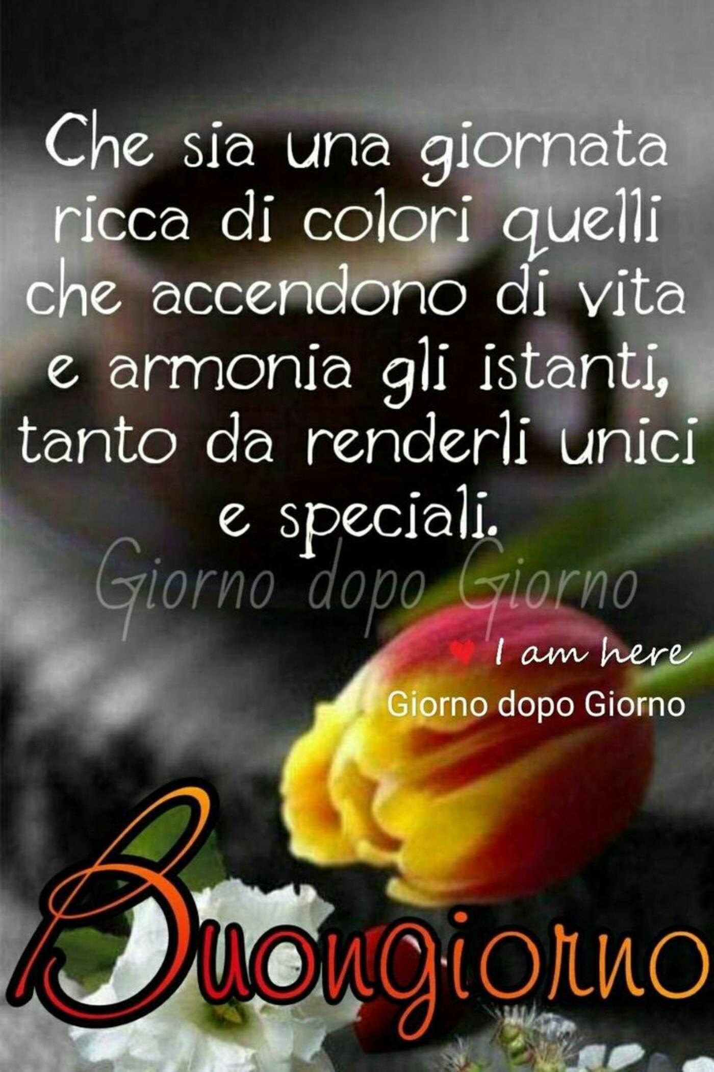 Che sia una giornata ricca di colori quelli che accendono la vita e armonia gli istanti, tanto da renderli unici e speciali. Buongiorno