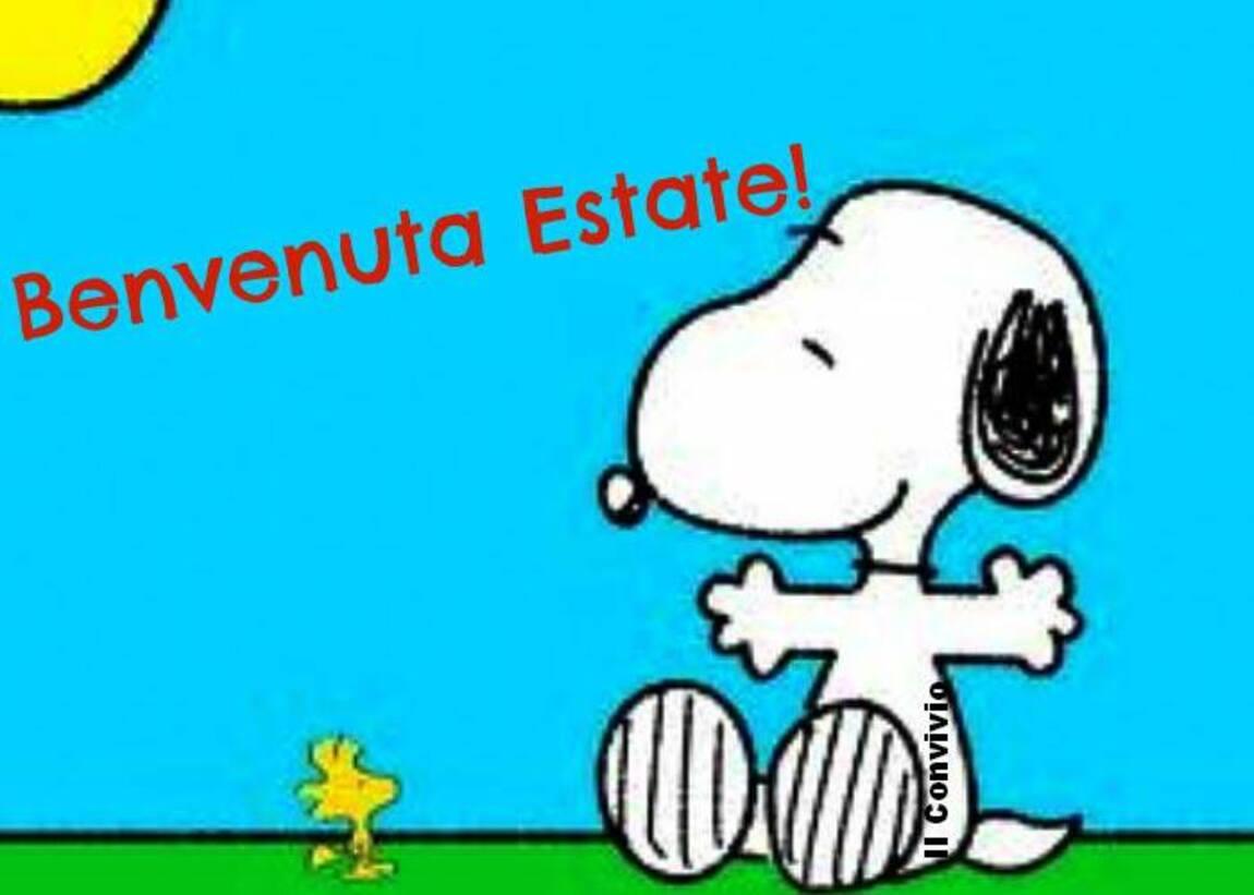 Benvenuta Estate Snoopy