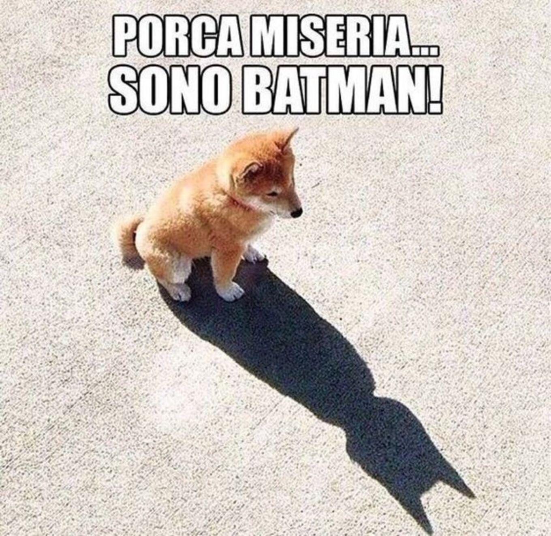 PORCA MISERIA! Sono Batman!