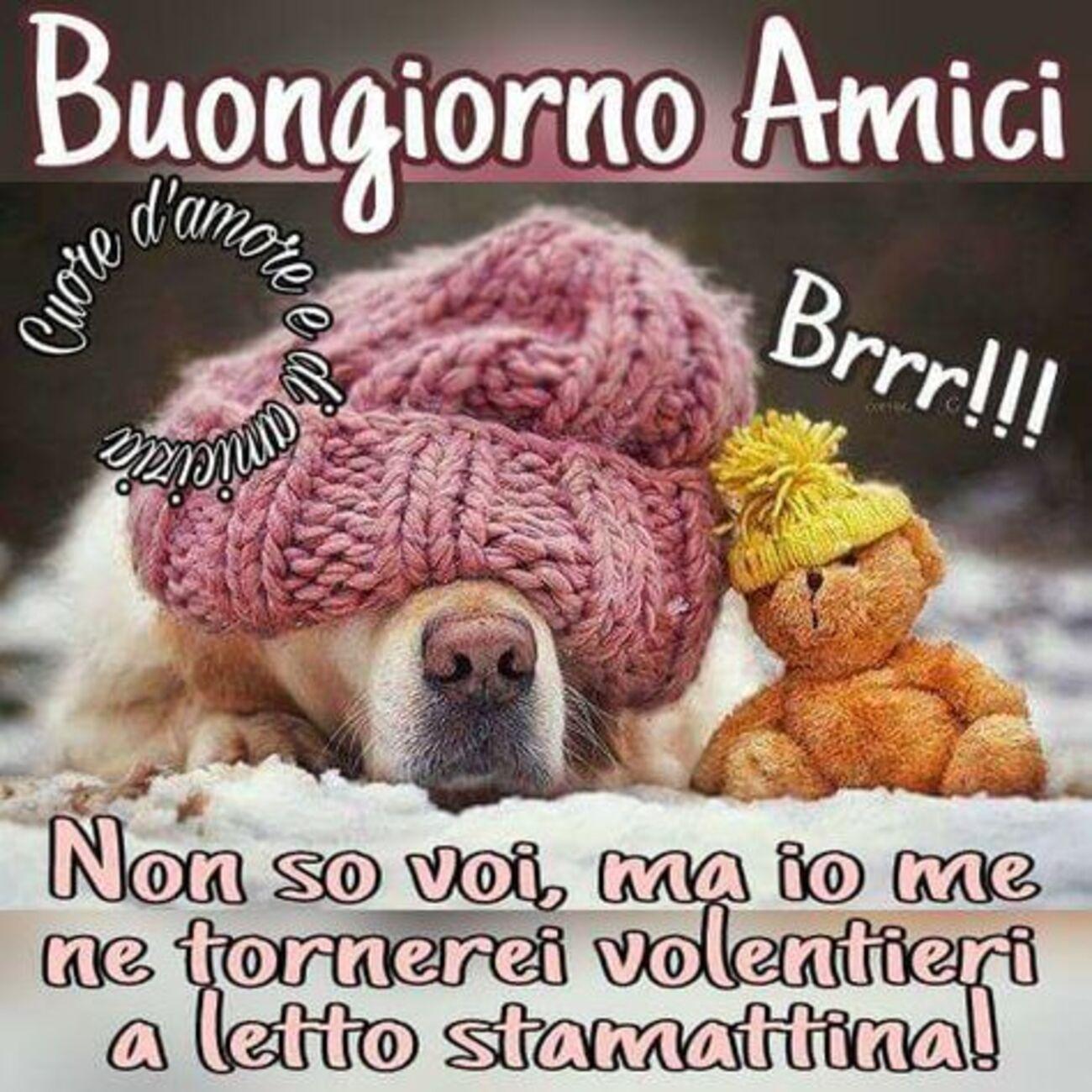 Buongiorno Amici Brrr!!! Non so voi, ma io me ne tornerei volentieri a letto stamattina!
