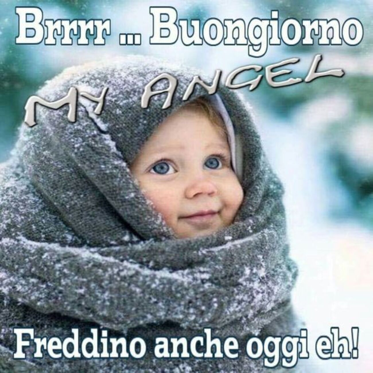 Brrr... Buongiorno Freddino anche oggi eh!