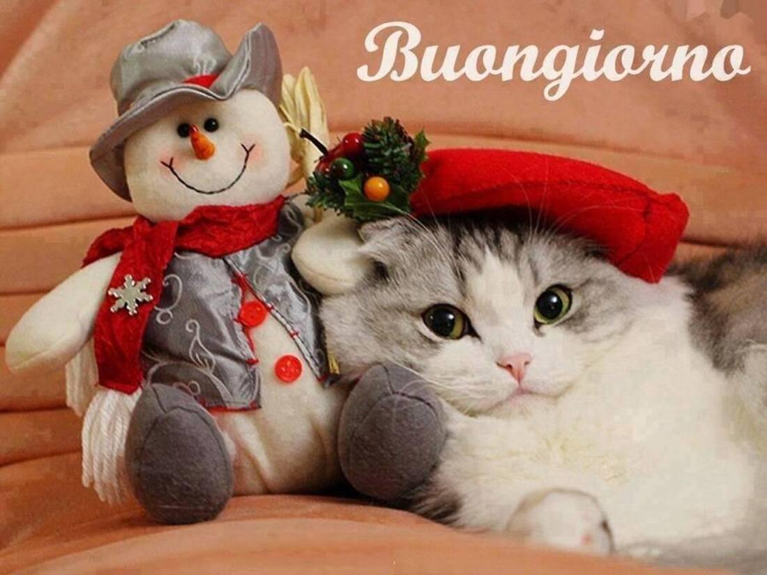 Buongiorno immagini natalizie