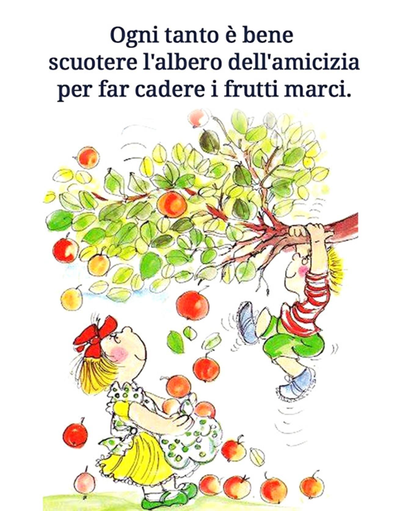 Ogni tanto è bene scuotere l'albero dell'amicizia per far cadere i frutti marci.