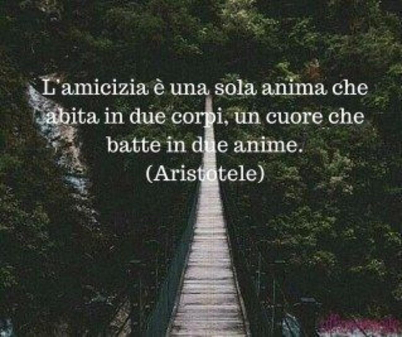 L'amicizia è una sola anima che abita in due corpi, un cuore che batte in due anime. Aristotele