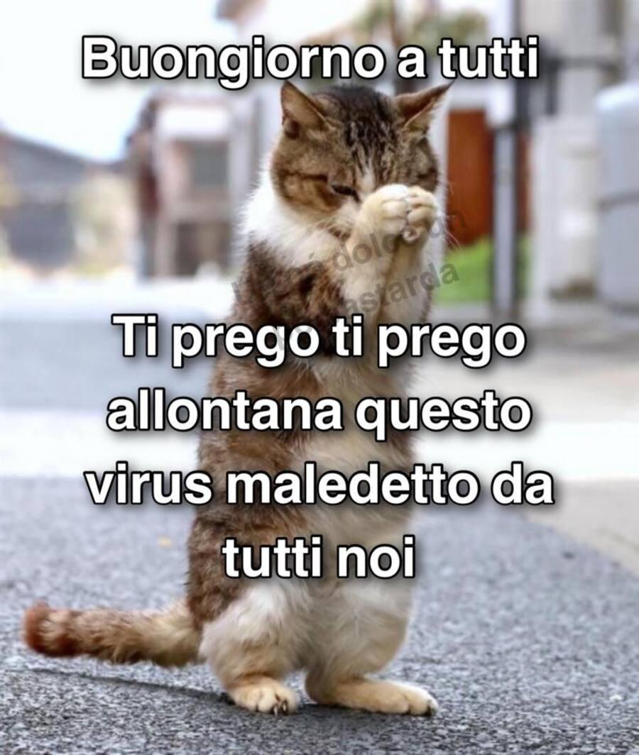 Buongiorno a tutti. Ti prego, ti prego, allontana questo virus maledetto da tutti noi.