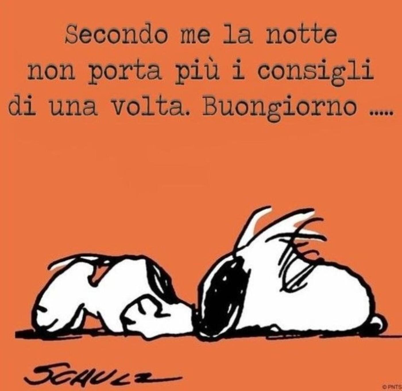 """""""Secondo me la notte non porta più i consigli di una volta... Buongiorno"""" - Snoopy"""