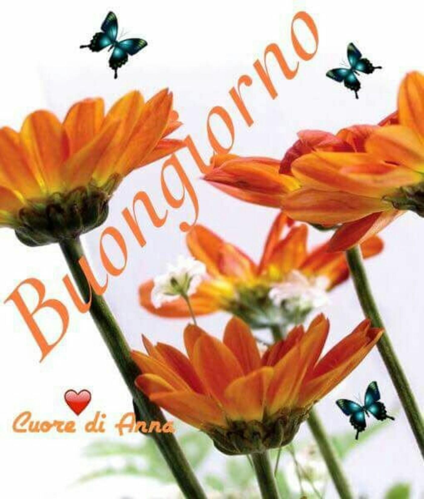 Cuore di Anna - Buongiorno coi fiori