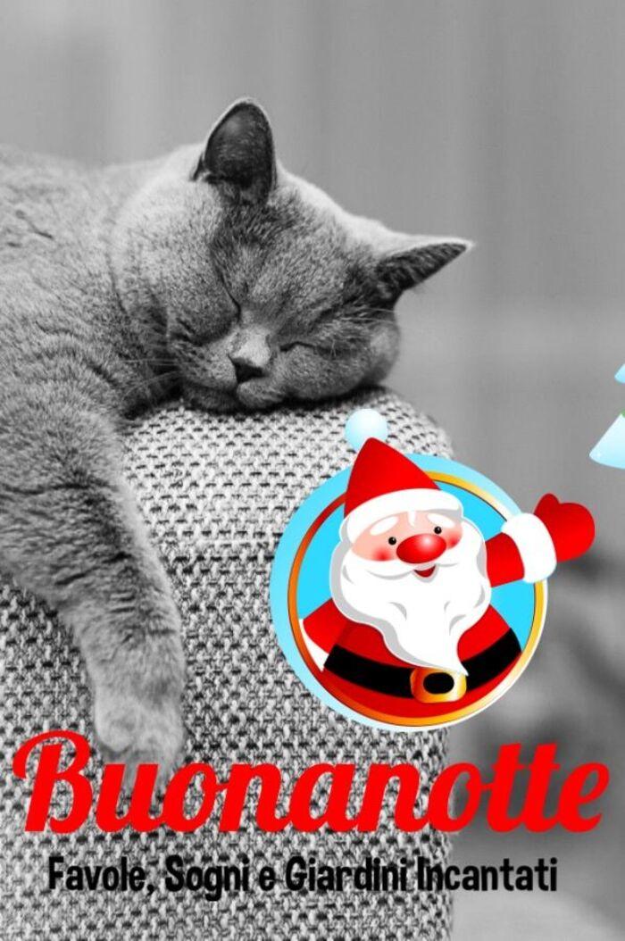 Foto per la Buonanotte natalizia