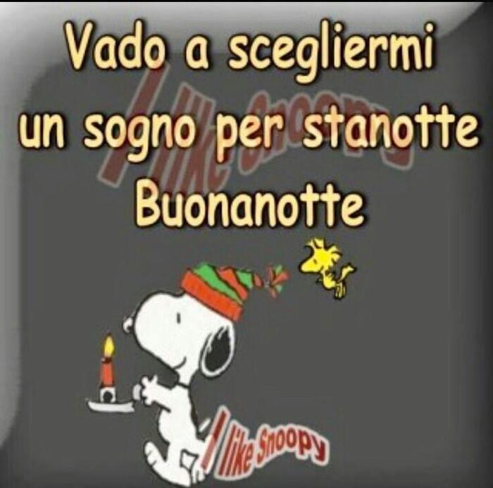 """""""Vado a scegliermi un sogno per stanotte, Buonanotte"""" - Snoopy e il Natale"""