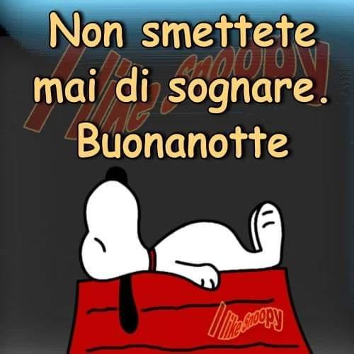 """Snoopy: """"Non smettete mai di sognare. Buonanotte"""""""